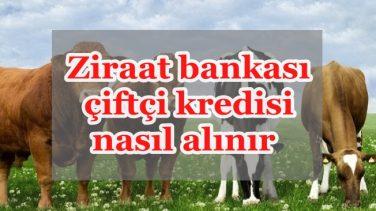 Ziraat bankası çiftçi kredisi nasıl alınır 2018