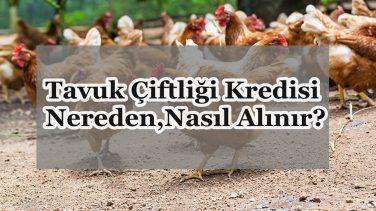 Tavuk Çiftliği Kredisi Nereden,Nasıl Alınır?