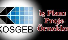KOSGEB  iş Planı Proje Örnekleri 2018