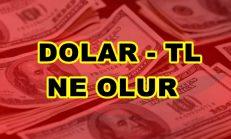 Dolar TL Ne Olur