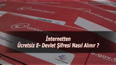 İnternetten Ücretsiz E-Devlet Şifresi Alma